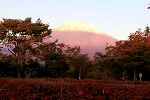 富士の杜カントリークラブ