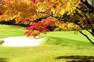 紅葉のゴルフ場