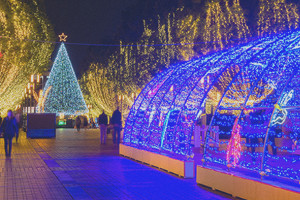 Tamacenter Illumination2015